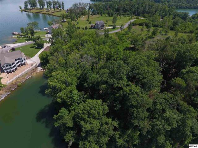 Lot 58R-1 Island View Drive S/D Island View, Sevierville, TN 37876 (#210644) :: The Terrell Team