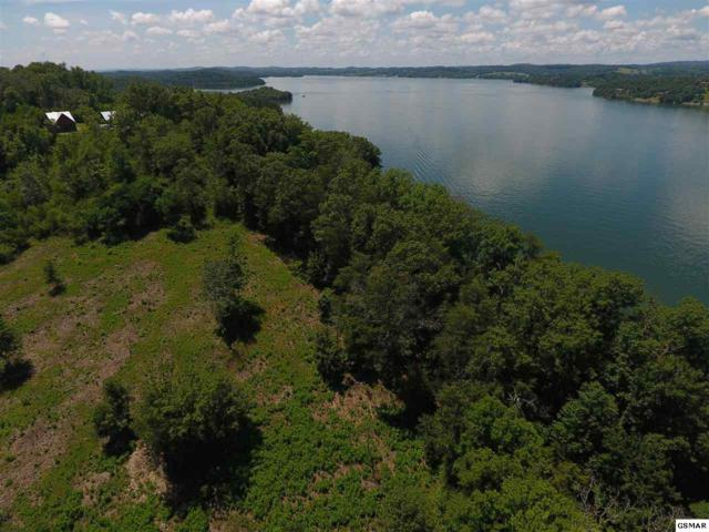 Lot 58R-2 Island View Drive S/D Island View, Sevierville, TN 37876 (#210645) :: Billy Houston Group