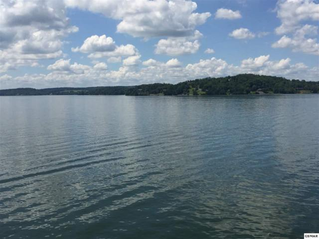 Lot 58R-4 Island View Drive S/D Island View, Sevierville, TN 37876 (#210647) :: Billy Houston Group