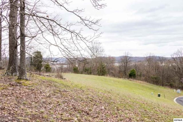 lot 203/204 Legacy Bay Legacy Bay Phas, Mooresburg, TN 37811 (#211125) :: Billy Houston Group