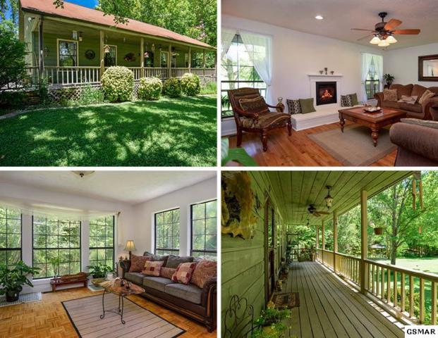 1035 Dishers Mountain Road, Sevierville, TN 37876 (#211408) :: Colonial Real Estate