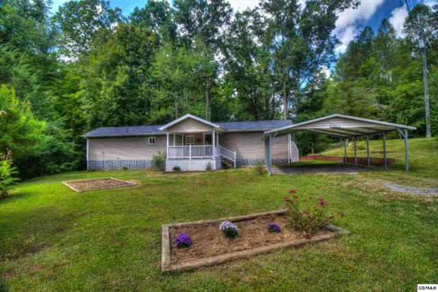 1403 Lin Creek Rd, Sevierville, TN 37876 (#212226) :: Four Seasons Realty, Inc