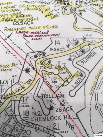 Ivy Lane Lot 5B & 6B, Gatlinburg, TN 37738 (#212974) :: Billy Houston Group