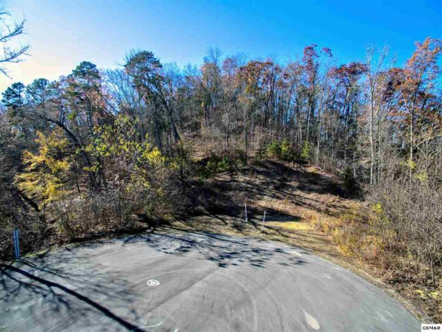 Lot 48 Monte Vista Douglas Lake, Dandridge, TN 37725 (#213268) :: Billy Houston Group