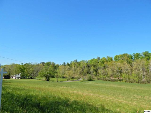 Flat Creek Rd - Lots 27-31 6.6 Acres Total, Sevierville, TN 37876 (#214223) :: Billy Houston Group