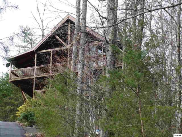 """4454 Whetstone Rd. """"Eagle's View"""", Sevierville, TN 37862 (#214982) :: Four Seasons Realty, Inc"""