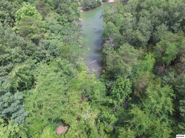 Lot 13R1 Pleasure Rd, Sevierville, TN 37876 (#216911) :: Four Seasons Realty, Inc