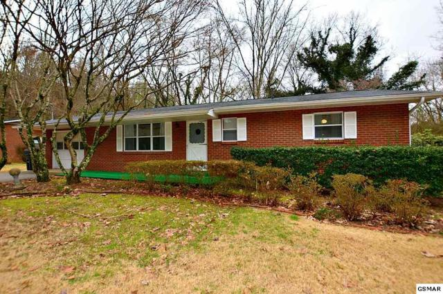 2018 Center Road, Pigeon Forge, TN 37863 (#220204) :: Colonial Real Estate