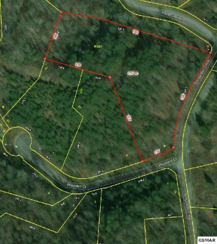 Lot 9 Fairgarden Circle, Sevierville, TN 37876 (#220640) :: Prime Mountain Properties