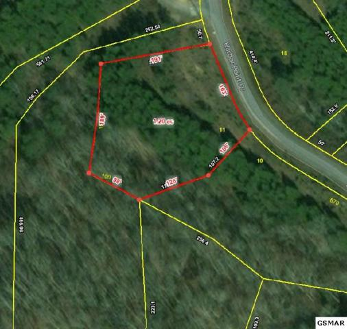 Lot 11 Harbor Point Dr, Sevierville, TN 37876 (#220643) :: Billy Houston Group