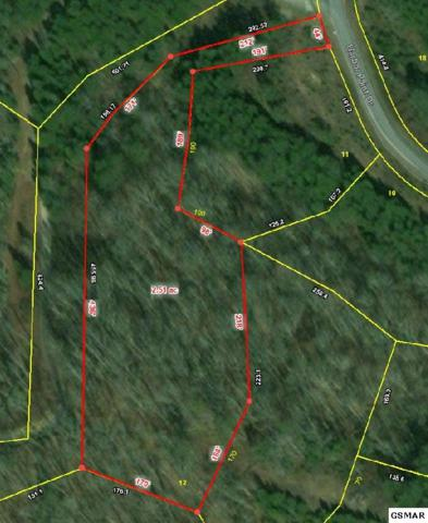 Lot 12 Harbor Point Dr, Sevierville, TN 37876 (#220645) :: Billy Houston Group