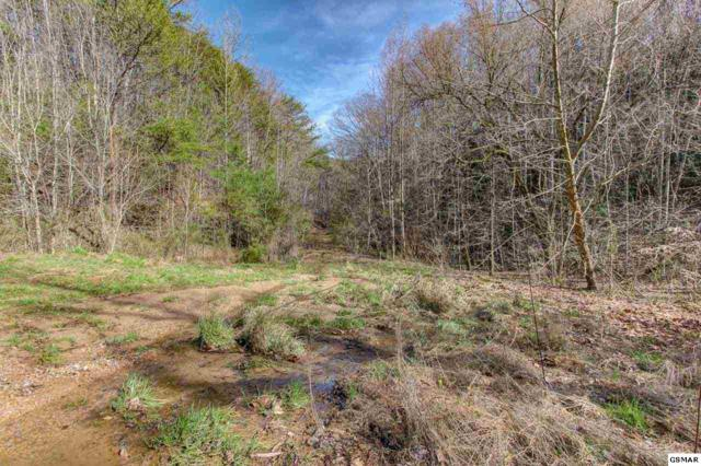 Lot 5 Cowden Spring Way, Sevierville, TN 37876 (#220878) :: Four Seasons Realty, Inc