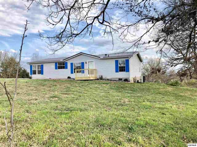 4174 Stansberry Road, Morristown, TN 37813 (#221505) :: Colonial Real Estate