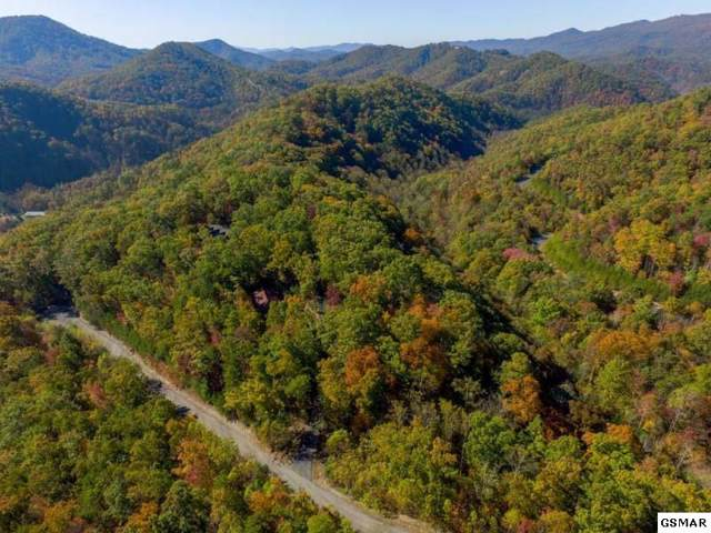 Settlers View Ln, Sevierville, TN 37862 (#224112) :: Colonial Real Estate