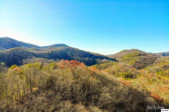 Lot 4 Happy Hollow Rd, Sevierville, TN 37862 (#225137) :: The Terrell Team