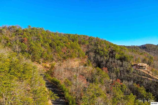 Lot 8 Happy Hollow Rd, Sevierville, TN 37862 (#225141) :: The Terrell Team