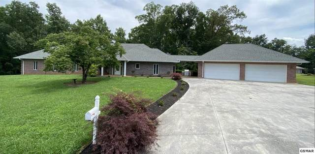 1317 Americana Drive, Pigeon Forge, TN 37863 (#225808) :: Four Seasons Realty, Inc