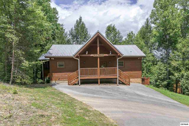 "2710 Owls Cove Way ""Bear Crossing"", Sevierville, TN 37862 (#225828) :: Colonial Real Estate"