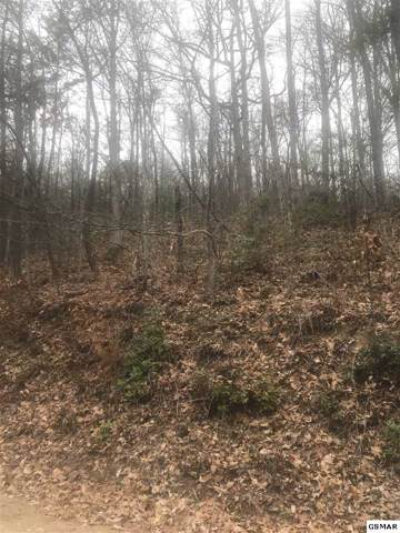 LOT 5 SEC 17A Pine Crest Lane Shagbark, Sevierville, TN 37876 (#225886) :: The Terrell Team