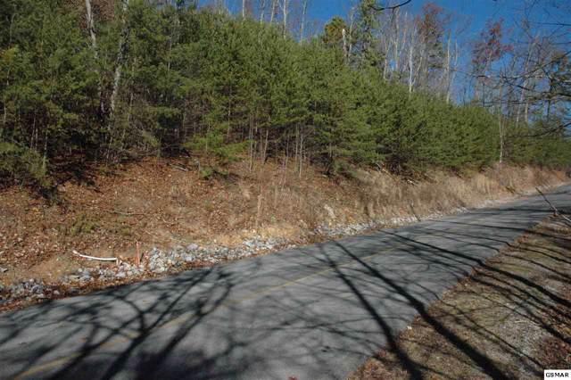 Lot 31 Ridgeback Lane, Sevierville, TN 37862 (#225941) :: Prime Mountain Properties