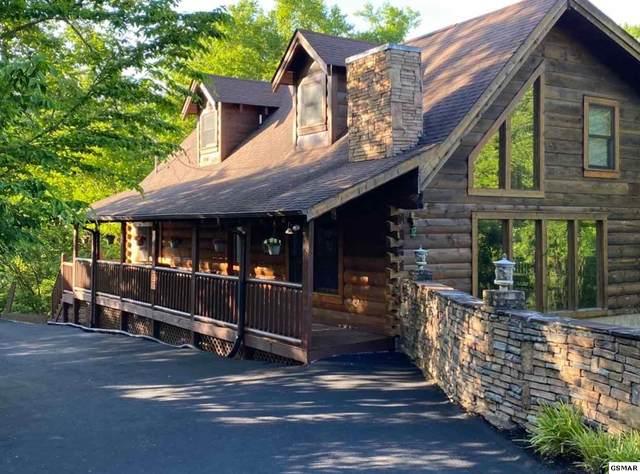 1618 Paradise Ridge Drive Wild Hogg Inn, Sevierville, TN 37862 (#226354) :: Jason White Team | Century 21 Four Seasons