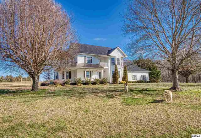 2940 Beecarter Rd, Dandridge, TN 37725 (#226431) :: Colonial Real Estate