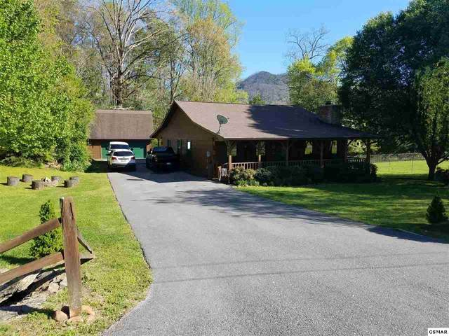 4110 Mae Lane Sevierville, Sevierville, TN 37862 (#226535) :: Four Seasons Realty, Inc