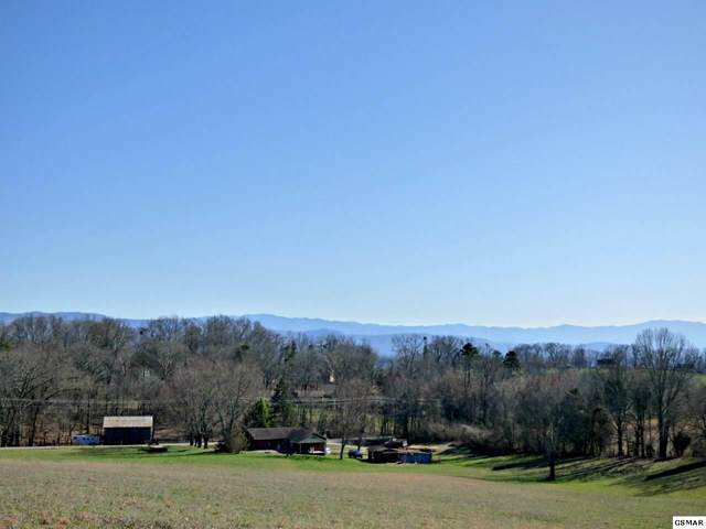 Lot 6 Valley Home Rd, Dandridge, TN 37725 (#226774) :: The Terrell Team