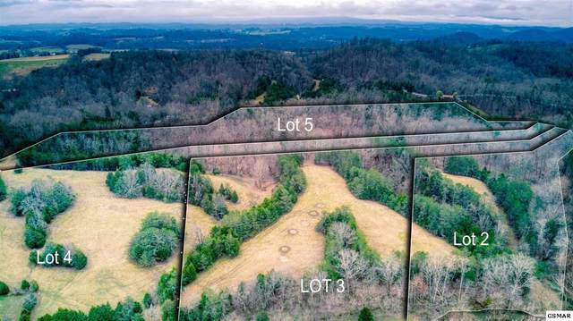 Lot 2 Smith School Rd, Strawberry Plains, TN 37871 (#227405) :: Colonial Real Estate