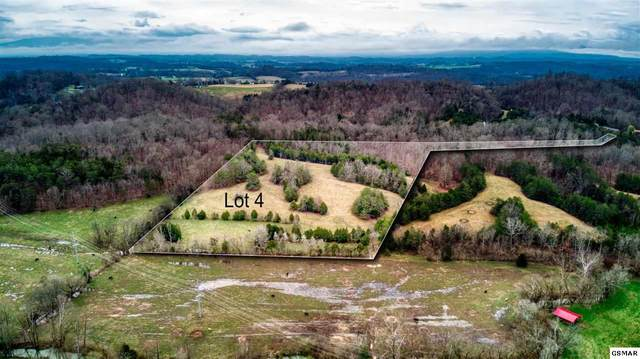 Lot 4 Smith School Rd, Strawberry Plains, TN 37871 (#227407) :: Colonial Real Estate