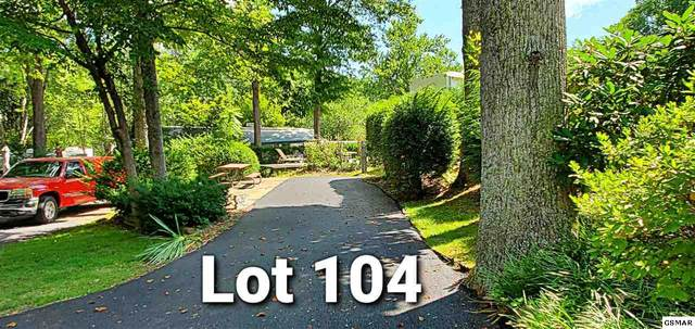 4229 E Parkway Lot 104 Outdoor, Gatlinburg, TN 37738 (#229028) :: Billy Houston Group