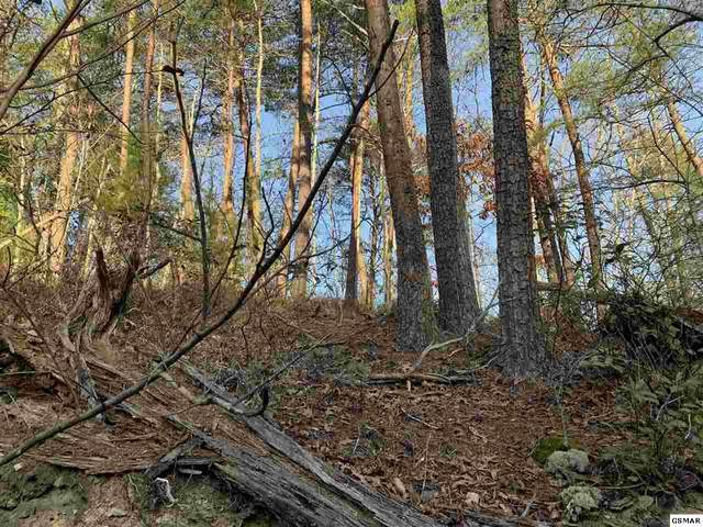 Lot 10 Teaberry Hill Way, Sevierville, TN 37862 (#231516) :: Suzanne Walls with eXp Realty