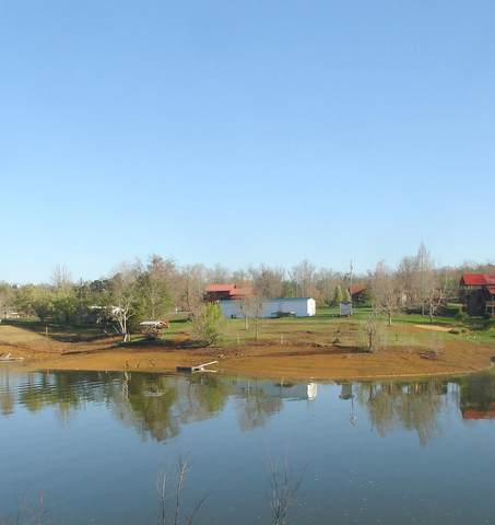 1019 Sunset View Rd, Sevierville, TN 37876 (#240010) :: Suzanne Walls with eXp Realty
