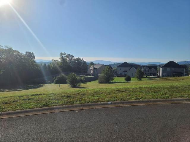 Lot 1 Vista Meadows Lane, Sevierville, TN 37876 (#241345) :: Century 21 Legacy