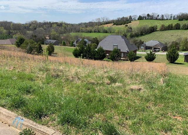 Infinity Ln - Lot 40, Sevierville, TN 37876 (#241696) :: Colonial Real Estate