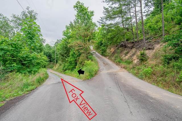 Fox View Lane, Sevierville, TN 37876 (#242133) :: Century 21 Legacy