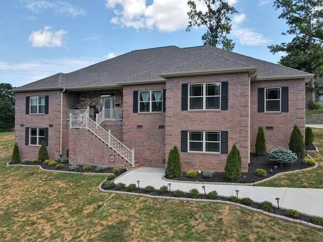 1920 Niagra Dr., Sevierville, TN 37862 (#242187) :: JET Real Estate