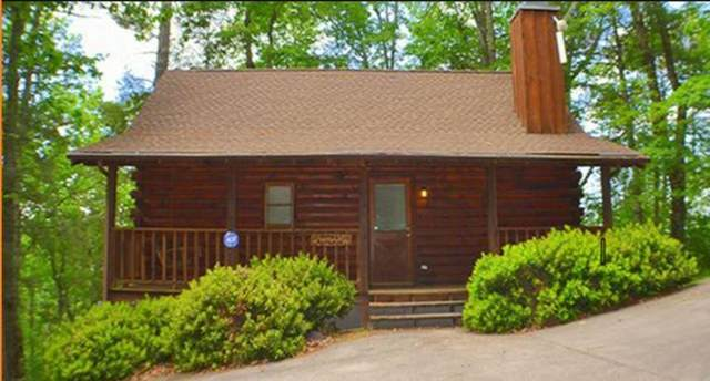 3201 & 3203 Priscilla Heights Ln Almost Paradise, Sevierville, TN 37862 (#242620) :: JET Real Estate