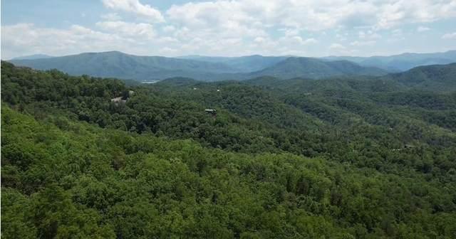 Lot 117E Settlers View Lane, Sevierville, TN 37862 (#242689) :: JET Real Estate