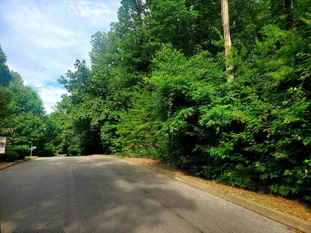 Lot # 42 Cloud View Dr, Sevierville, TN 37876 (#243627) :: Billy Houston Group