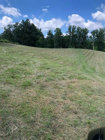 230 Asheville Hwy, Strawberry Plains, TN 37871 (#243900) :: Colonial Real Estate