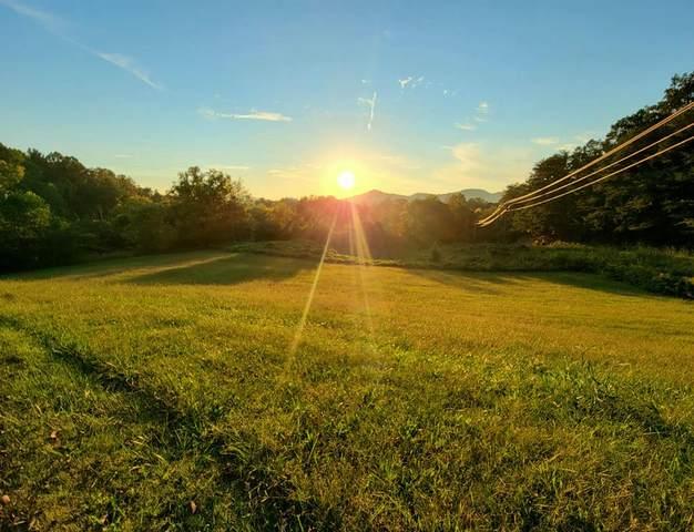 Lot 16 Perilla Road, Cosby, TN 37722 (#244812) :: Prime Mountain Properties
