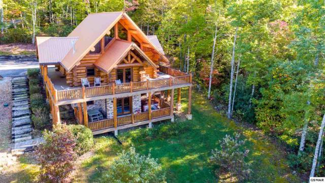3714 Cinnamon Way, Sevierville, TN 37862 (#211863) :: Colonial Real Estate