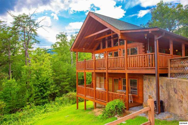 """1713 Bear View Road """"A Bear's View"""", Sevierville, TN 37876 (#217791) :: Billy Houston Group"""