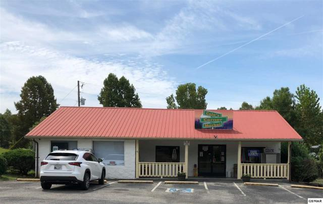 993 Smokey Mountain Queen Rd, Sevierville, TN 37876 (#218411) :: Colonial Real Estate