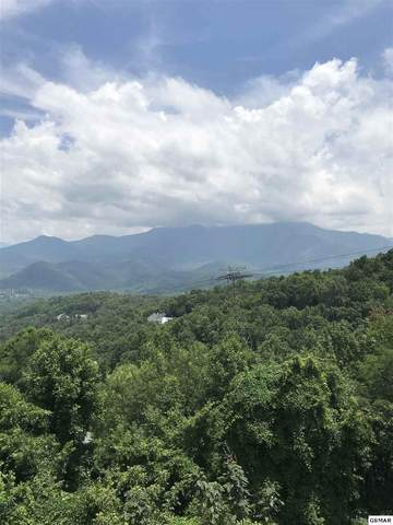 Lot #5 Luzerne Dr., Gatlinburg, TN 37738 (#224665) :: The Terrell Team