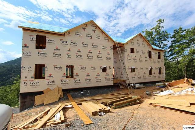 Lot 111 Timber Cove Way, Sevierville, TN 37862 (#225060) :: Billy Houston Group