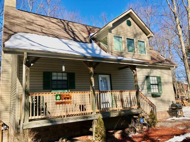 903 Cove Lane Bear Footin', Gatlinburg, TN 37738 (#240318) :: Tennessee Elite Realty