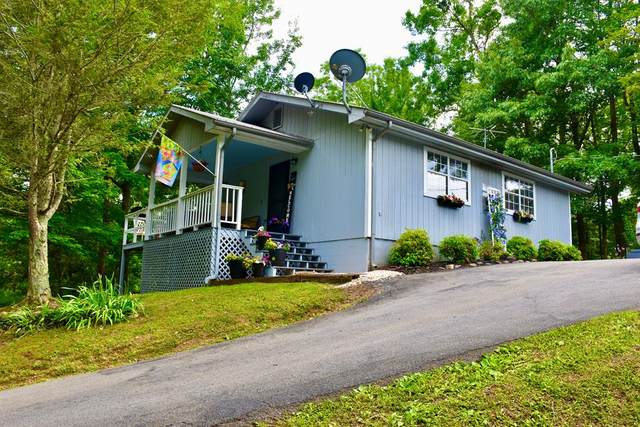 3951 Heavens View Ln, Sevierville, TN 37876 (#242318) :: Colonial Real Estate