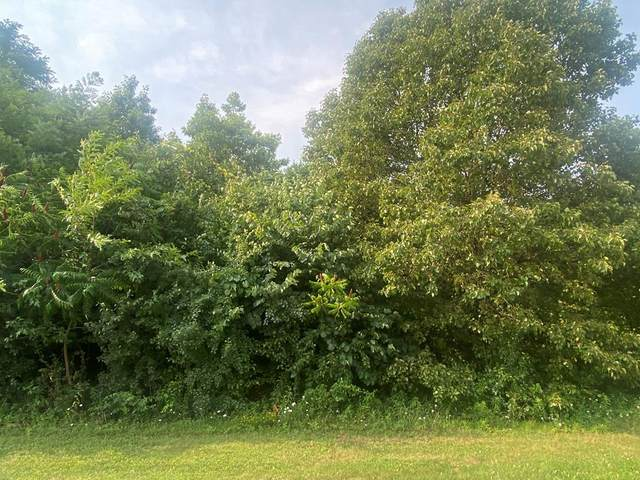 3705 Eagle Lane, Gatlinburg, TN 37738 (#243376) :: Billy Houston Group